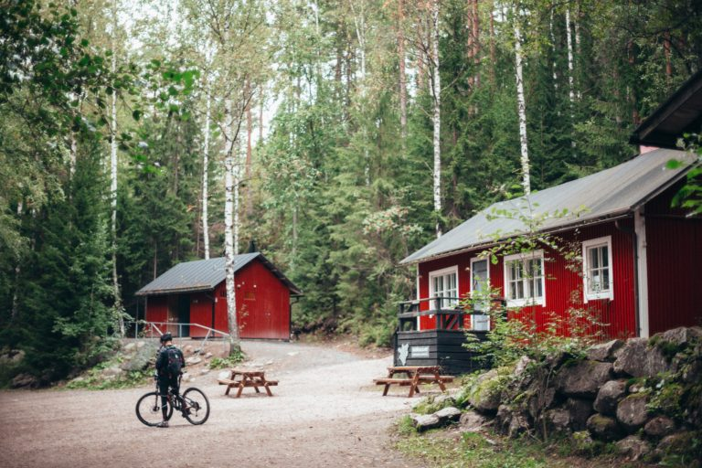 red-and-white-wooden-houses-surrounded-with-trees-1508742
